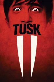Tusk 2014 720