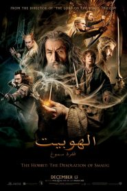 The Hobbit The Desolation of Smaug 2013